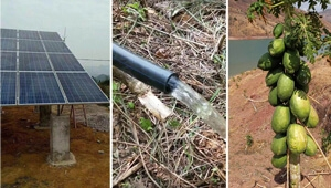 Solar pump irrigation project in Guizhou province China