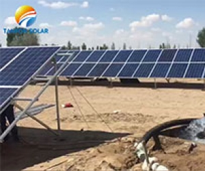 Kenya customer purchase Tanfon solar panel water pump system